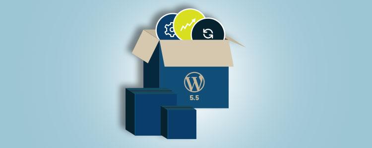WordPress 5.5: Novità e Cambiamenti della Nuova Versione